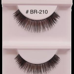 BR-210
